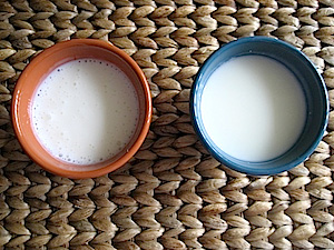 difference between greek yogurt and kefir